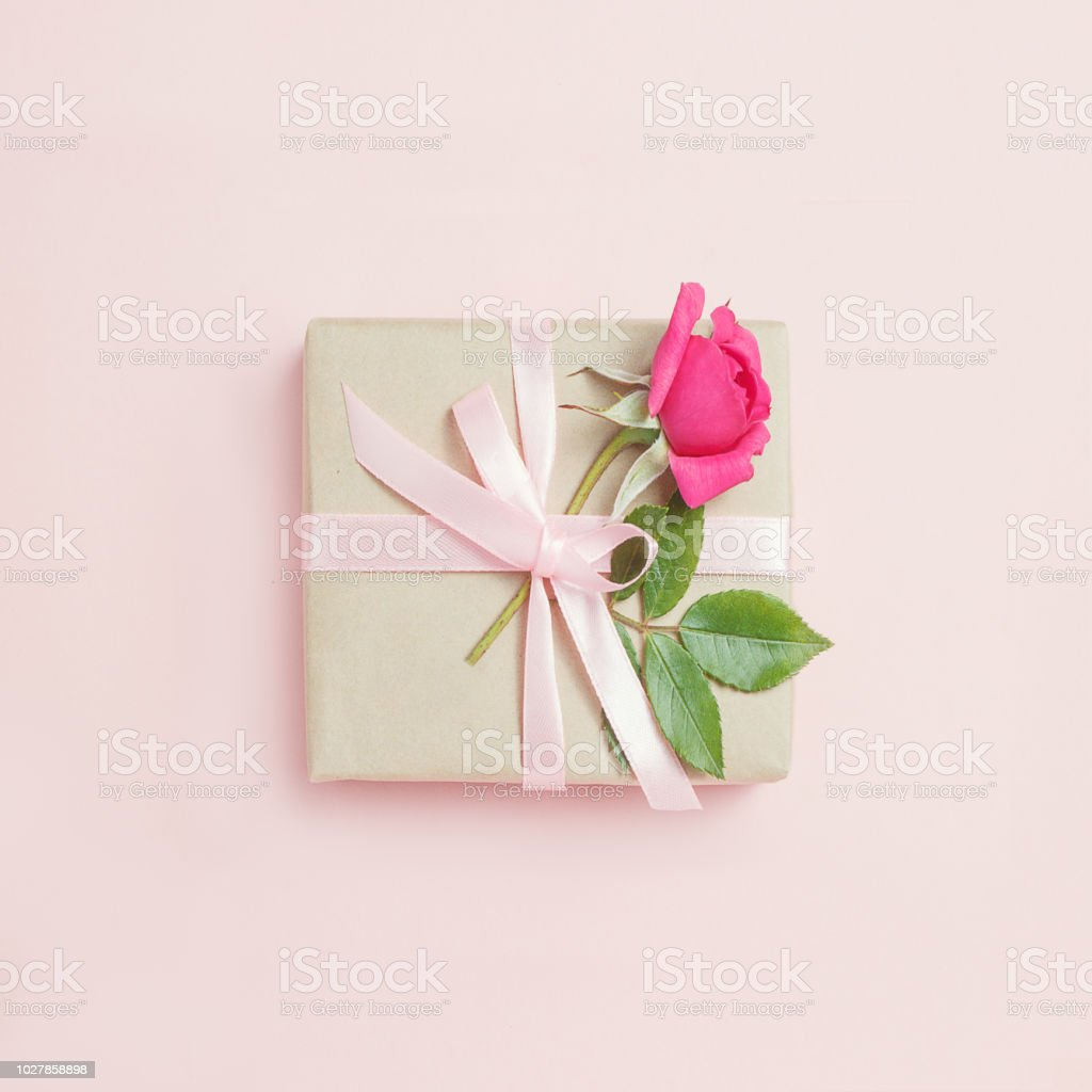 Gift box with rose on pink bacground. stock photo