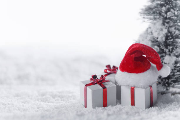Gift boxes in snow under tree stock photo