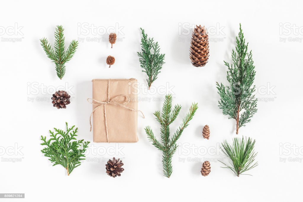 Gift, winter plants on white background. Flat lay, top view