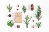 istock Gift, winter plants on white background. Flat lay, top view 859821254