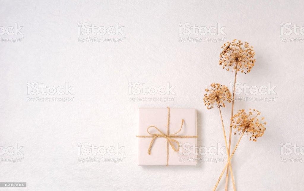 Geschenkpapier, getrocknete Allium über weiß – Foto