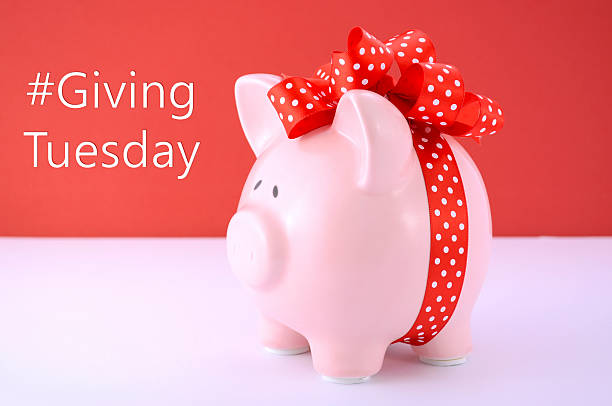 gift wrapped piggy bank on red white background. - giving tuesday 個照片及圖片檔
