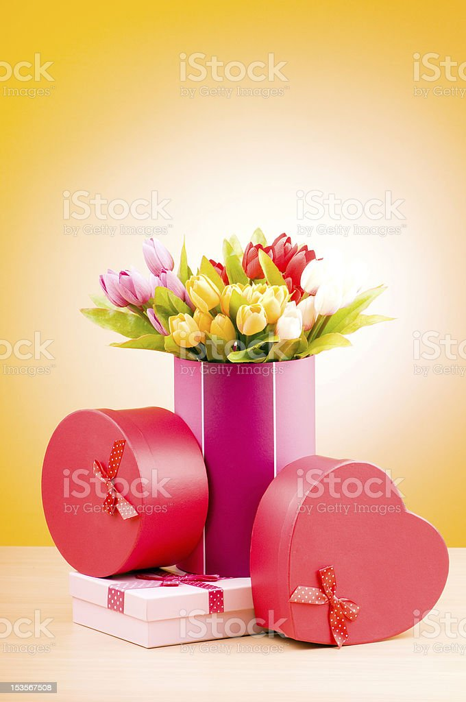 Giftbox and tulips against gradient background royalty-free stock photo
