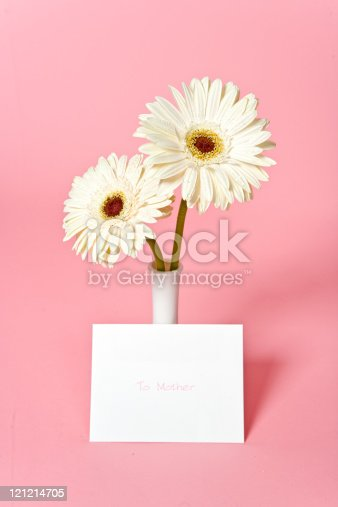 Two white Gerbera daisies in a vase and a card for Mother's Day.