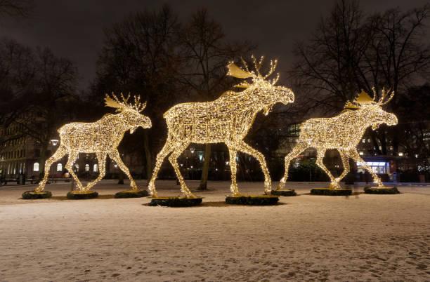 gigantisk älg eller älg juldekoration gjorda av led-ljus - älg sverige bildbanksfoton och bilder