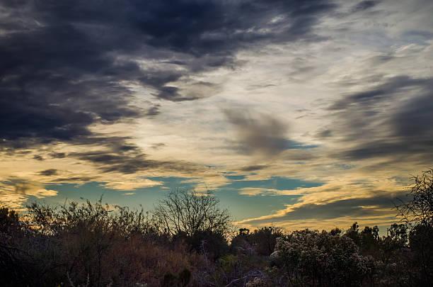 Gilbert Riparian Preserve Sunset stock photo