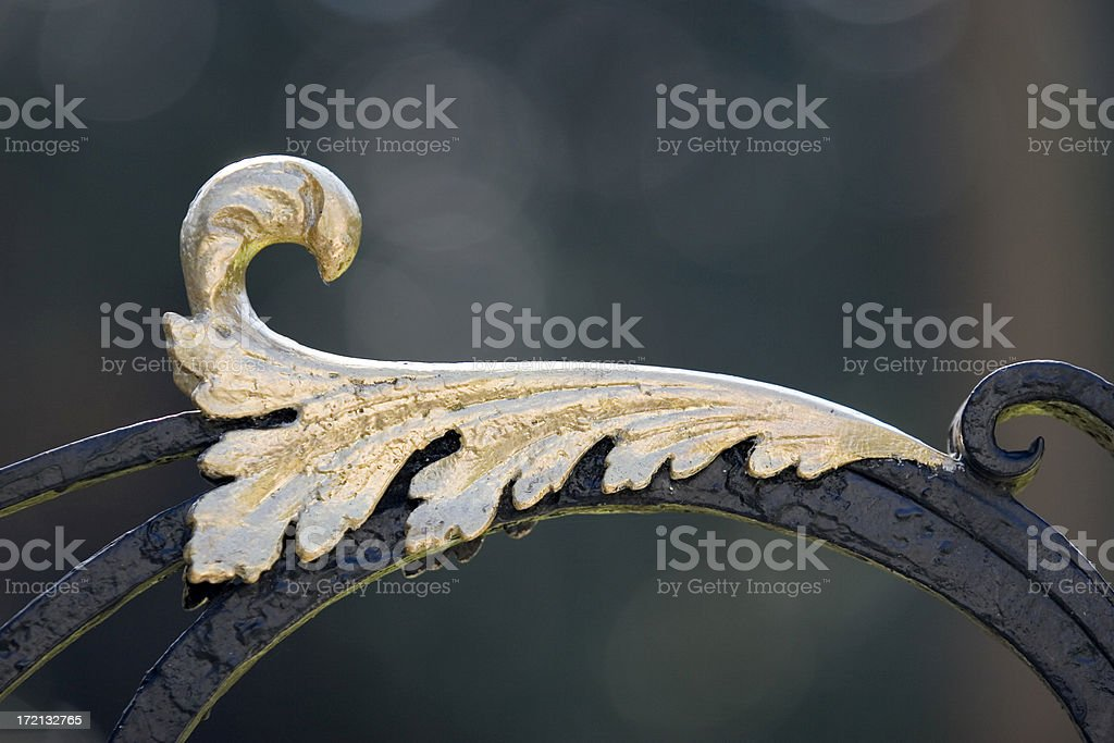 Gilded Fence (Extreme Closeup) royalty-free stock photo