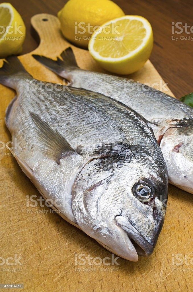 Gilthead fishes ready to preparation royalty-free stock photo