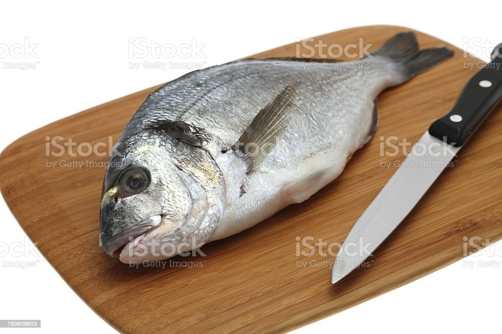 Gilthead Sea Bream on a wooden cutting board royalty-free stock photo