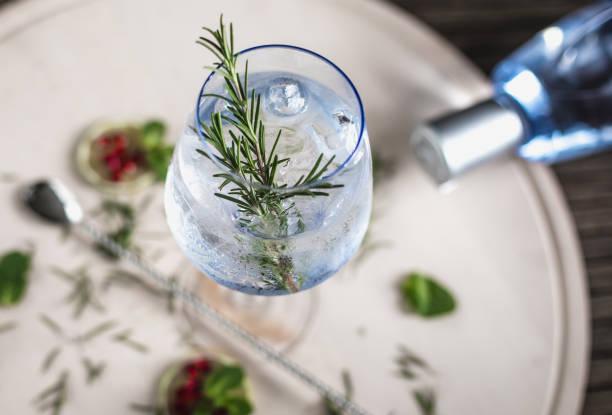 Gin Soda with a Rosemary - Photo