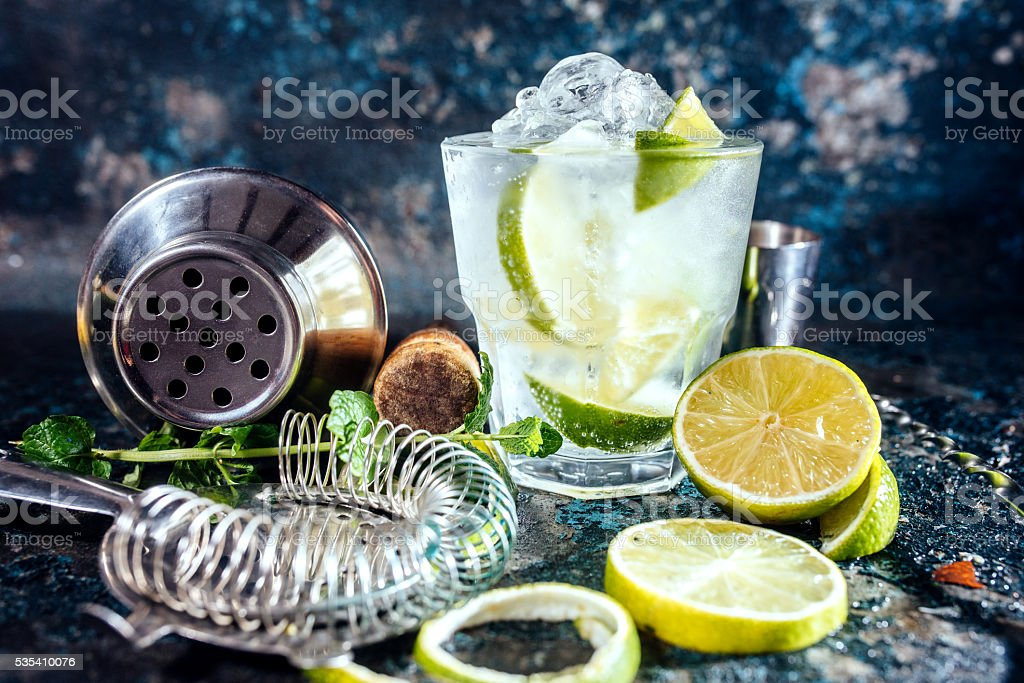 Gin tonic alcoholic cocktail with ice and mint stock photo