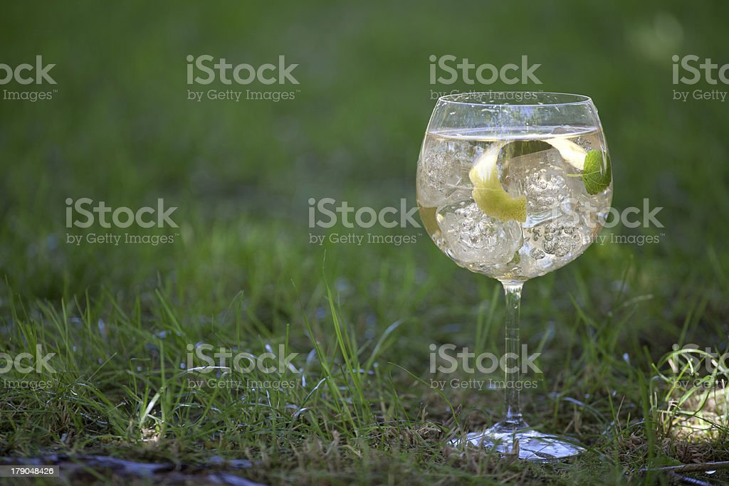 Gin tonic cocktail with grass background royalty-free stock photo