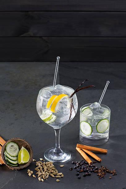 gin tonic cocktail mit lima und viele gewürze - zimt gurken stock-fotos und bilder
