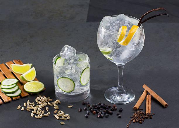 gin tonic cocktail mit lima gurke vanille nelken kardamom - zimt gurken stock-fotos und bilder