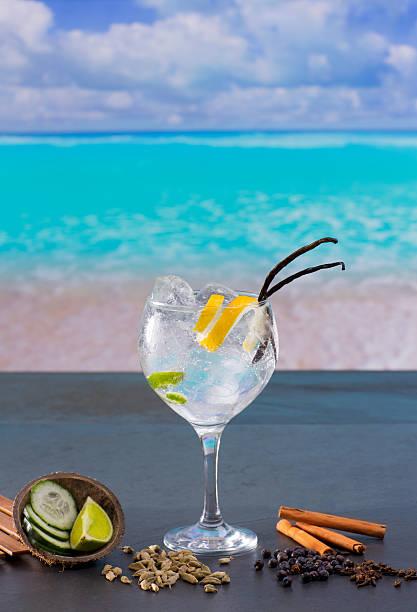 gin tonic cocktail mit gewürzen im tropischen karibischen strand - zimt gurken stock-fotos und bilder