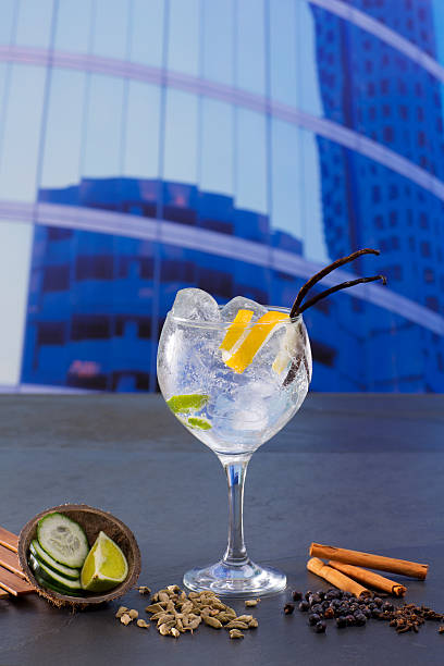 gin tonic cocktail mit gewürzen in städtischen city buildings - zimt gurken stock-fotos und bilder