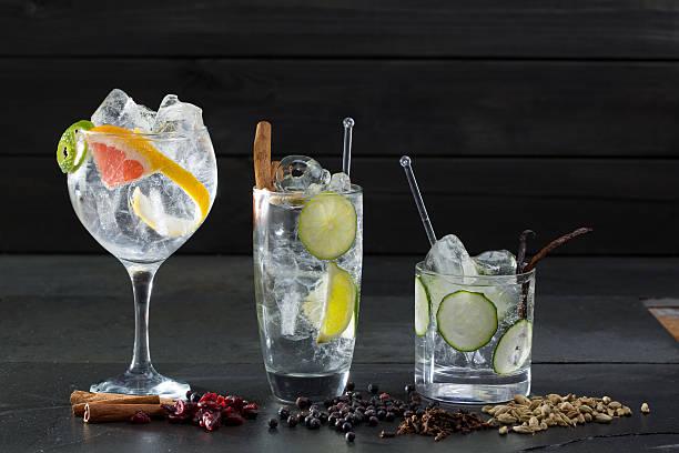 gin tonic cocktails mit lima gurke und grapefruit - zimt gurken stock-fotos und bilder