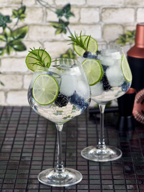 Gin tonic in a balloon glass or copa stock photo