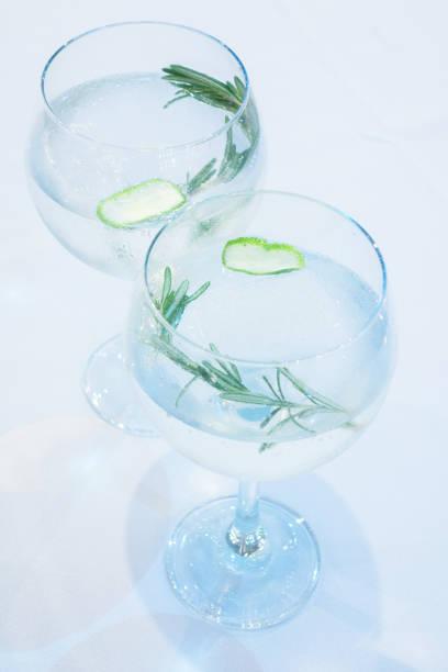 Gin tonique au citron et romarin - Photo