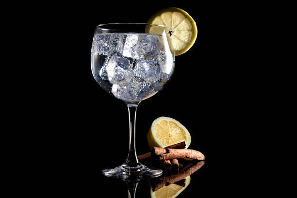 Tónico de Gin con limón y canela - foto de stock
