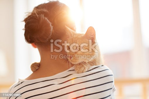 Back view portrait of unrecognizable young woman holding gorgeous ginger cat on shoulder, copy space