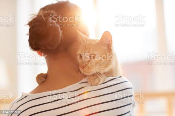 Ginger cat embracing owner picture id1142921565?b=1&k=6&m=1142921565&s=612x612&h=ooybfd e4eloriy1pjh vvtmqzmxwnuaag7vcrk3qem=