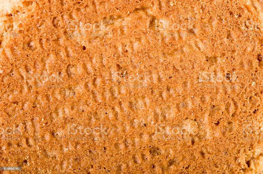 Ginger nut biscuits background, close-up on back side. stock photo