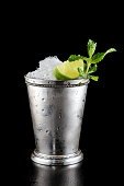 Gin Gin Mule, classic drink with gin, lemon juice and sugar syrup