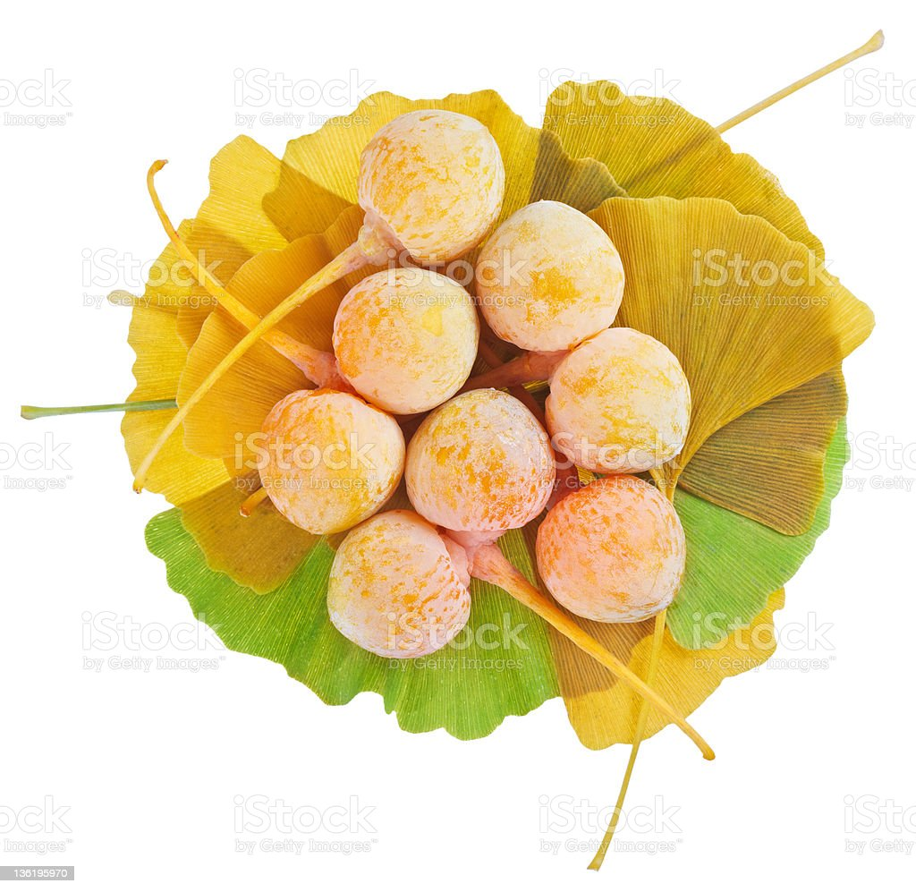 Ginkgo Biloba fruits heap over leaves isolated on white stock photo