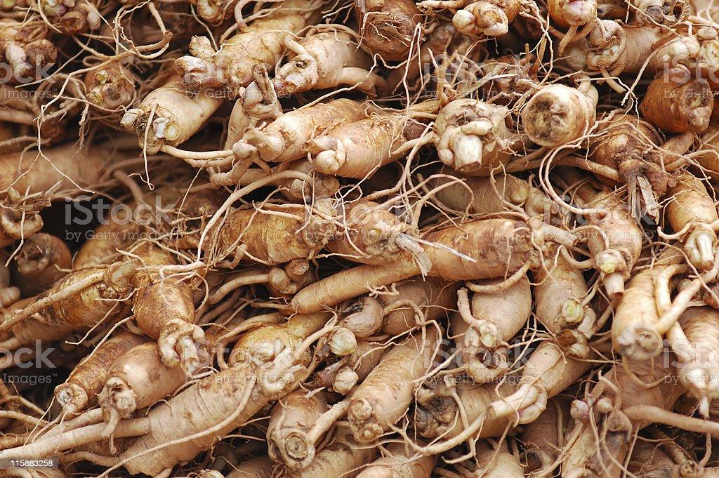 Ginseng close up stock photo