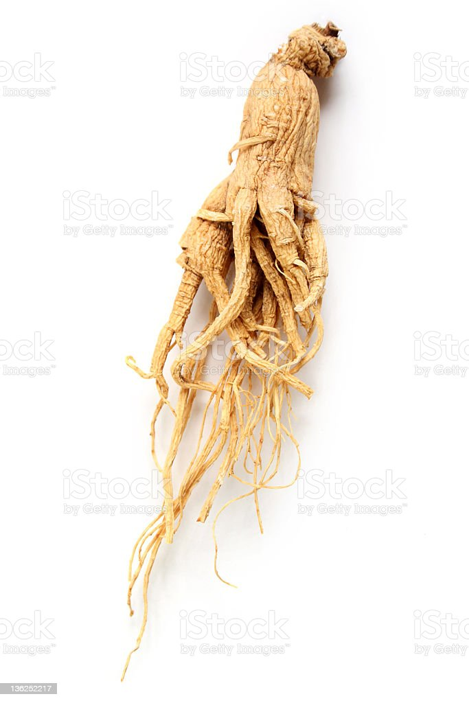 Ginseng root isolated on white stock photo