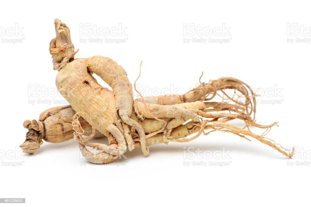 Ginseng root on white background stock photo