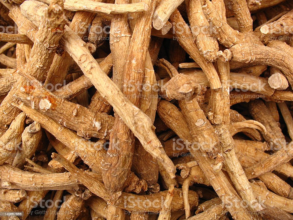 Ginseng roots from Chinese herbal pharmacy stock photo