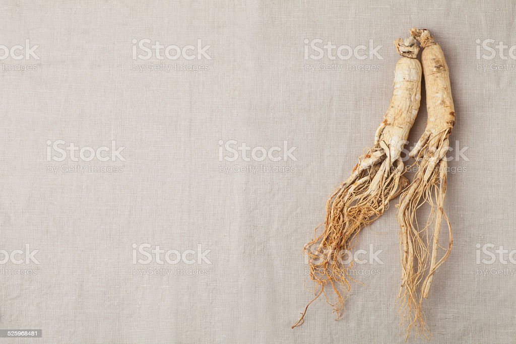 ginseng roots stock photo