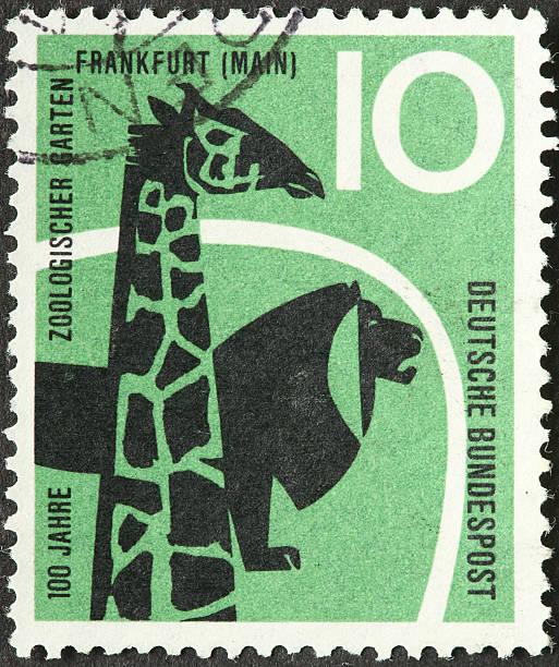 Giraffe and lion picture id173838369?b=1&k=6&m=173838369&s=612x612&w=0&h=rwgzt5iwx9rlzlioxupzmoqdlf1fodi9uqwultqjqjw=