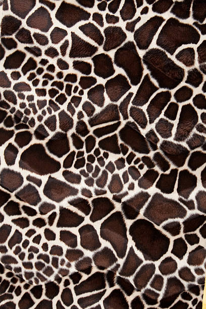 Giraffe Animal Print stock photo