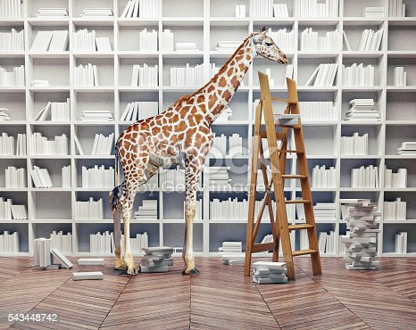 istock giraffe baby in the  library 543448742