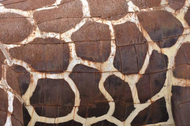 giraffe-körper-hintergrund - flecktarn stock-fotos und bilder