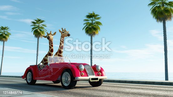 istock Giraffe couple in a retro car . Safari trip concept . This is a 3d render illustration . 1214845774
