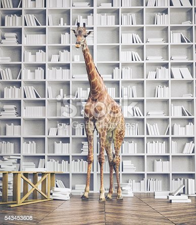 istock giraffe in the room 543453608