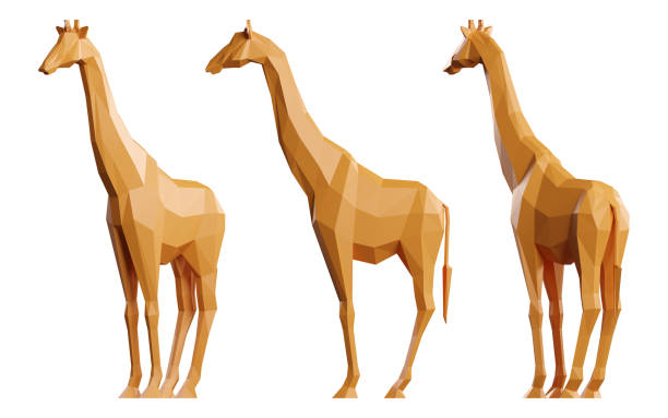 Giraffe set of low poly 3d models isolated on white background picture id1199218264?b=1&k=6&m=1199218264&s=612x612&w=0&h=rz8gcelysyd zsckt jiywqsjozdt uvac1792spqwc=