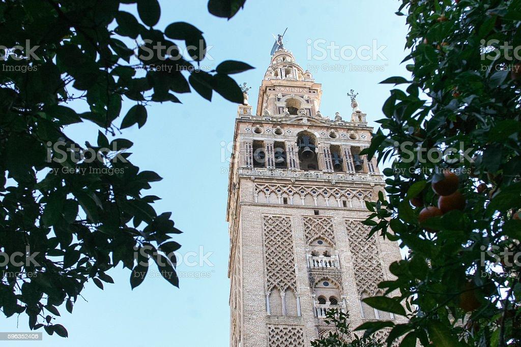 Giralda de Sevilla stock photo