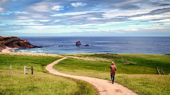 Girl alone walking on path leading towards peaceful nature scenery in New Zealand