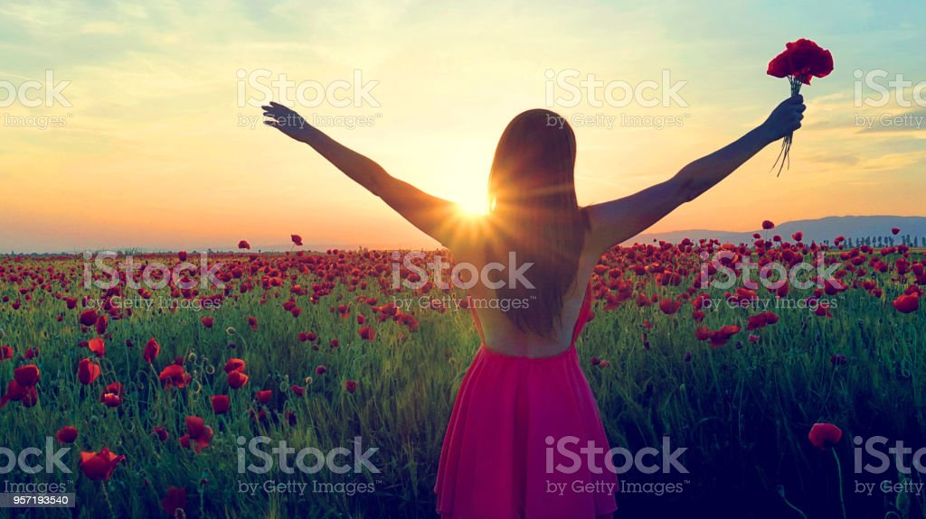 Girl among a field of poppies stock photo