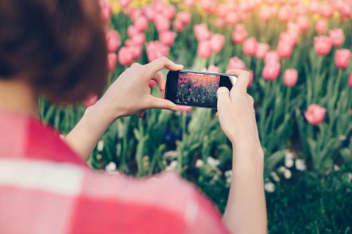 Girl among field of tulips