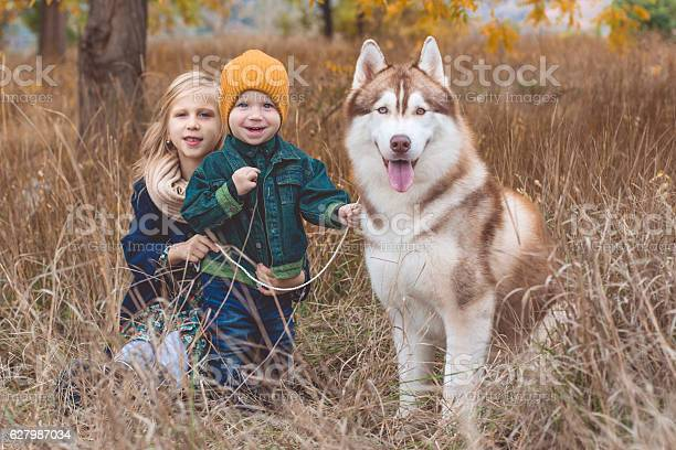 Girl and boy are walking with husky dog picture id627987034?b=1&k=6&m=627987034&s=612x612&h=nxq5dtroxzopuw2t5lqs7ij0ts5wr9ns41c6fobpyoy=