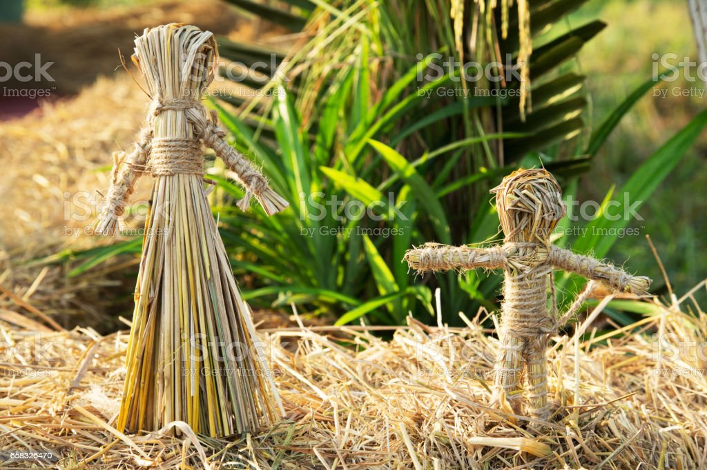 Girl and boy Rice straw puppets in organic form stock photo