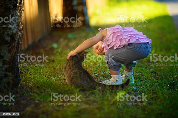Girl and cat in the country picture id493876878?b=1&k=6&m=493876878&s=612x612&h= jmvgdc3z6e8ysybhf4ovabrcd4mo5hnwjvt5m3j5kw=