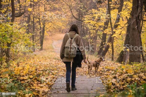 Girl and dog on walk in beautiful autumn nature park picture id864997886?b=1&k=6&m=864997886&s=612x612&h=dhtelhaaelhs1ls0kta6lswwo4efx47oezqi ghkbo8=