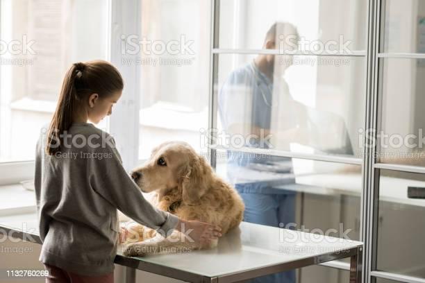 Girl and dog picture id1132760269?b=1&k=6&m=1132760269&s=612x612&h=utqn nnouz3mdfqutmwbk315nq akttntakoxbumjae=